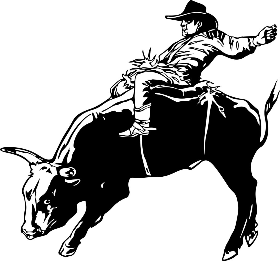 "The EXCA is the original and only recognized association for the sport of Extreme Cowboy Racing. The Extreme Cowboy Race™ was originated by the first ""Original Extreme Cowboy"", Craig Cameron."