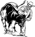 Wall Decals and Stickers - Bull Training