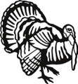 Turkey Animals Picture Graphic Art Room Home Decor  Vinyl Wall Decal Stickers 20x20