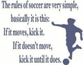 The rules of soccer Picture Art  Home Decor Sticker  Vinyl Wall Decal  31x21