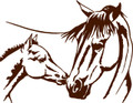 Horse And Baby  Picture Art  Home Decor Sticker  Vinyl Wall Decal  21x21