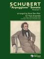 """Schubert, """"Arpeggione"""" Sonata [CF:114-41505]"""