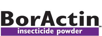 boractin boric acid