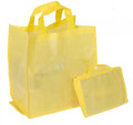 Non Woven Foldable Grocery Bag With Inbuilt Base : Standard