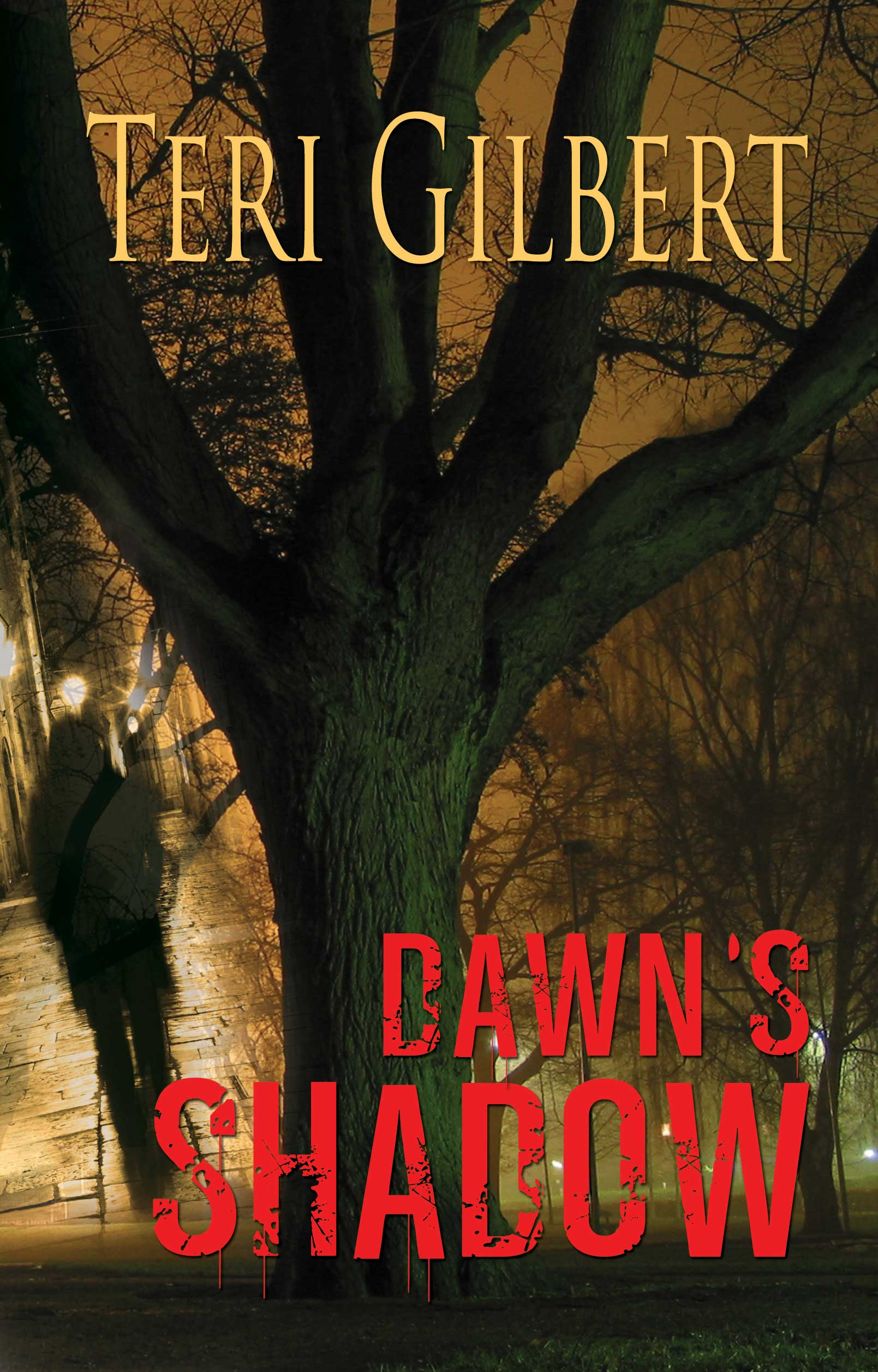 Dawn's Shadow Bookcover Image