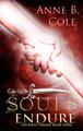 Souls Endure