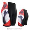 FIXGEAR ST-W25 Women's Cycling Padded Shorts