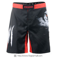 Fixgear FMS-18 Men's Training Shorts