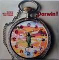 Banco del Mutuo Soccorso - Darwin!  lp reissue