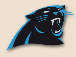 Carolina Panthers Cornhole Decal