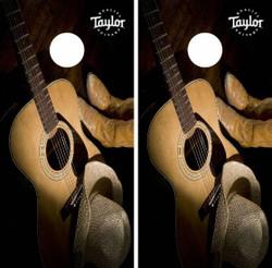 Taylor Guitar Cornhole Wraps