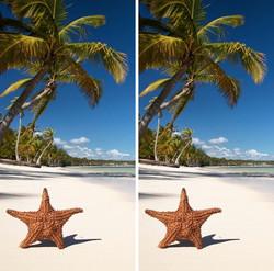 Star Fish Cornhole Wraps