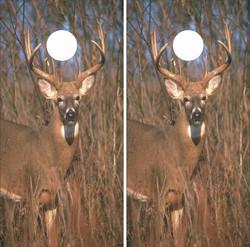 Deer in the Wild Cornhole Wraps