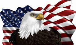Eagle Flag Cornhole Decals