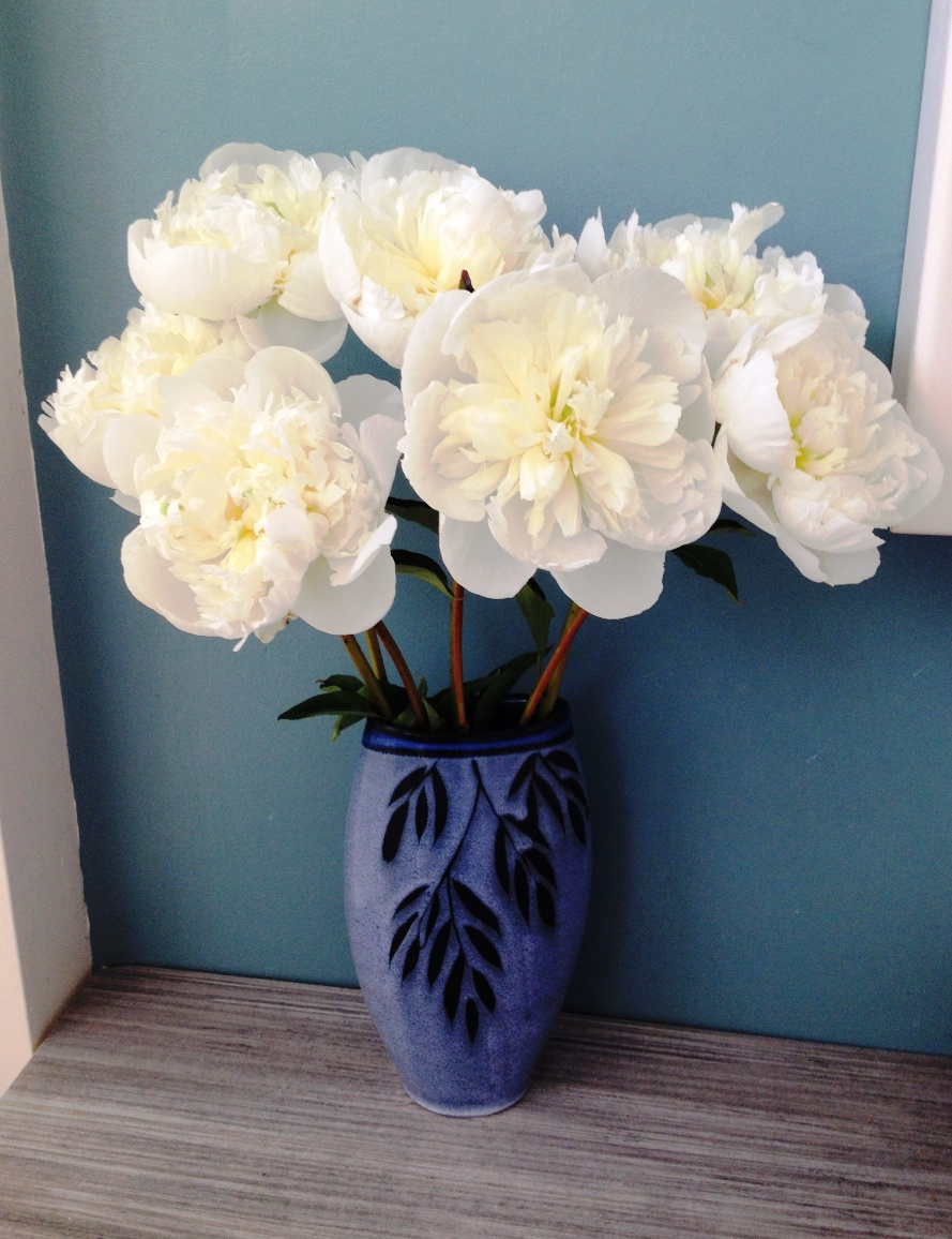 Peoniesoniesonies flyboy naturals llc your peonies were shipped fresh from our farm still closed to marshmallow stage after a short time in a vase of fresh water they will begin to open into reviewsmspy