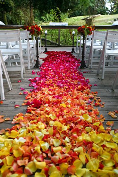 Rose Petal Aisle Styles and How to Calculate Petals Needed ...