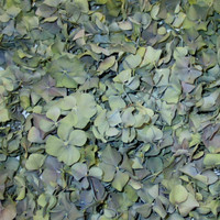 8 Hydrangea Preserved Freeze Dried Hydrangea Petals