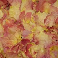 """BB"" Living Easy Preserved freeze Dried Rose Petals"