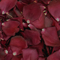 Crimson Bouquet Preserved Freeze Dried Rose Petals