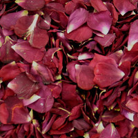 """BB"" Showbiz Preserved Freeze Dried Rose Petals"