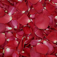 Falling In Love Preserved Freeze Dried Rose Petals