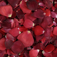 WEDDING Reds Preserved Freeze Dried Rose Petals