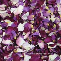 """BB"" #1 Blend Preserved Freeze Dried Rose Petals"
