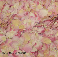 """BB"" #5 Blend Preserved Freeze Dried Rose Petals"