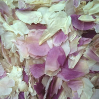 Ivory, Pink, Mauve Preserved Freeze Dried Peony Petals