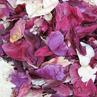 """BB"" Assorted Colors Preserved Freeze Dried Peony Petals"