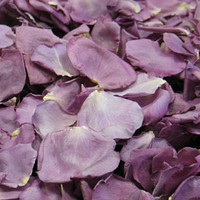 Fragrant Plum Preserved Freeze Dried Rose Petals