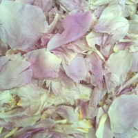 Sarah Preserved Freeze Dried Peony Petals