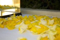 Leanna & Christians Wedding Petals