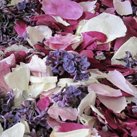 Peony & Lilac Preserved Freeze Dried Petal Blend