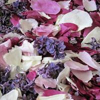 Peony & Lilac Preserved Freeze Dried Petal Blend