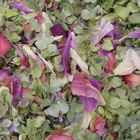 Assorted Colors Preserved Freeze Dried Peony & Hydrangea Petals