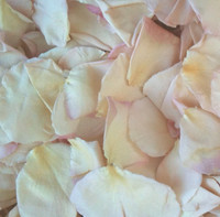 Wedding Blush Preserved Freeze Dried Rose Petals