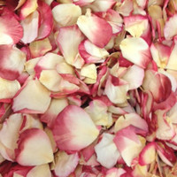 Love & Peace Preserved Freeze Dried Rose Petals