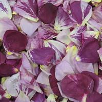 Memorial Petals Preserved Freeze Dried Rose Petals | Flyboy Naturals