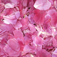 Bright Pink Preserved Freeze Dried Peony Petals