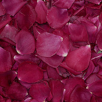 Olympiad Preserved Freeze Dried Rose Petals