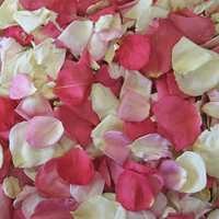 Pretty in Pink Blend Preserved Freeze Dried Rose Petals
