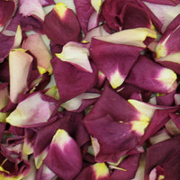 Love Preserved Freeze Dried Rose Petals
