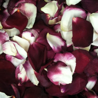 Love Potion #9 Preserved Freeze Dried Rose Petals