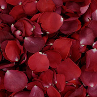 Ole' Red Preserved Freeze Dried Rose Petals