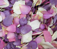 Ivory Pink Lavender Preserved Freeze Dried Rose Petals Fragrant