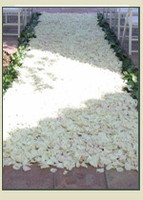 Rose Petal Aisle Detail