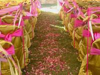*Wedding Petals
