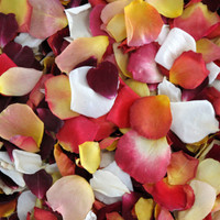 Sunset Blend Preserved Freeze Dried Rose Petals