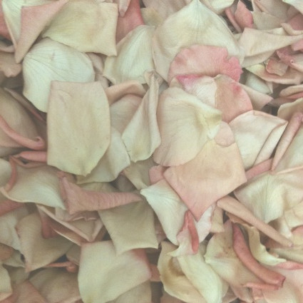VINTAGE Preserved Freeze Dried Petals